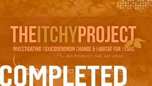 The ITCHY Project
