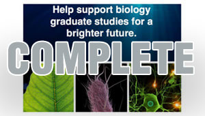 Biology Graduate Student Association Fundraiser