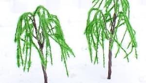 Willows - Kandace
