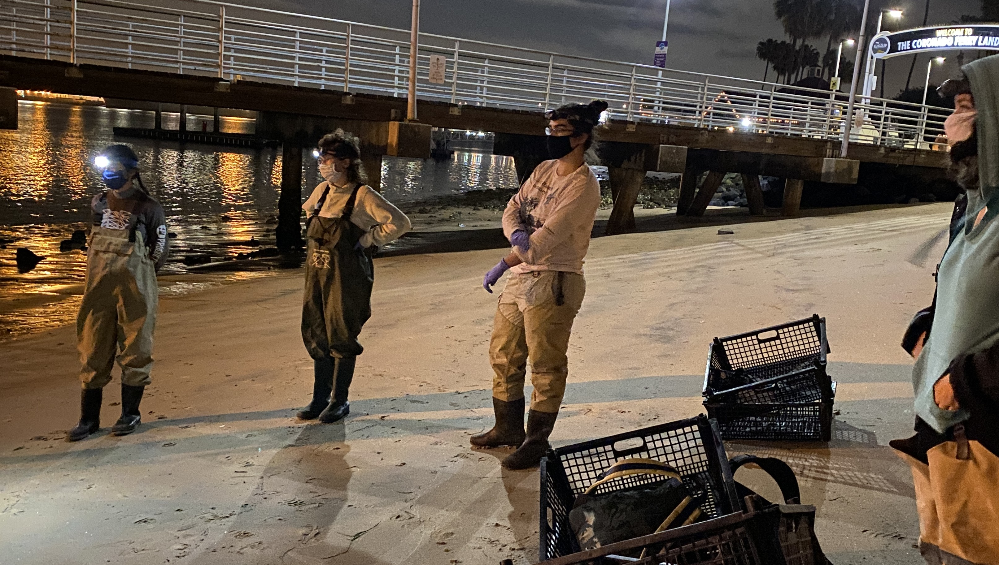 SCERP Summer course 2021--Middle-of-the-night sampling at low tide in San Diego Bay