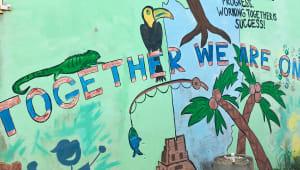 Peacework: Environmental Education