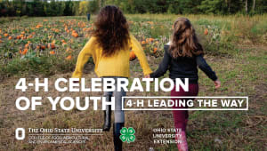 4-H Celebration of Youth Event Ticket and Sponsorship