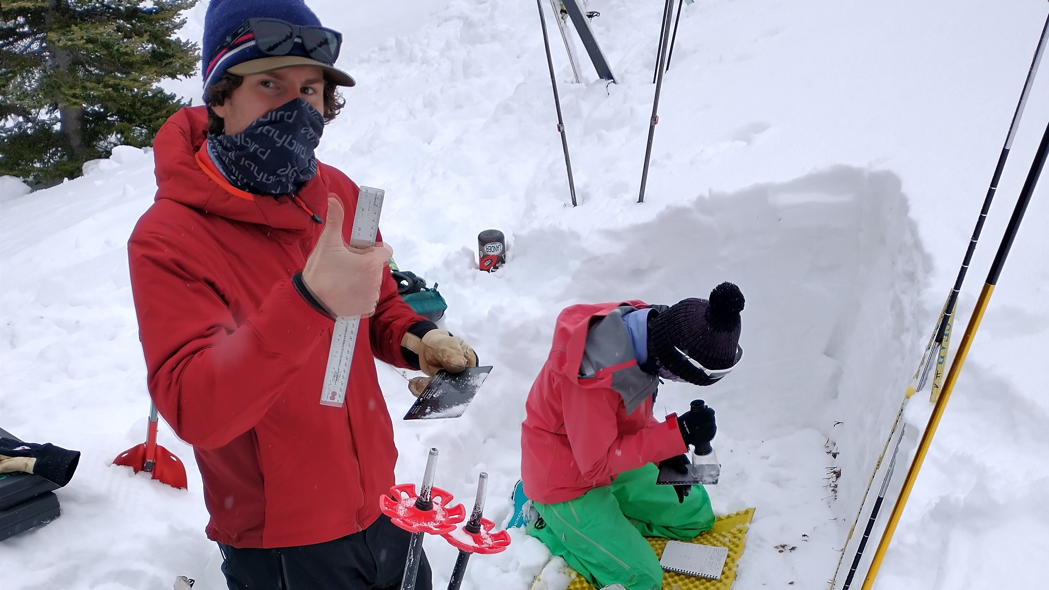 Avalanche Research