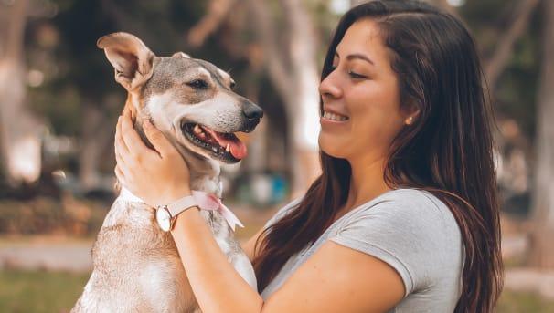Pet Memorials: For Partner Veterinary Clinics and Hospitals Image