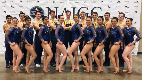 Cal Gymnastics Club Image