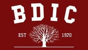BDIC Bright Idea Scholarship