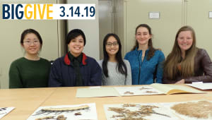 Documenting biodiversity with undergraduate students