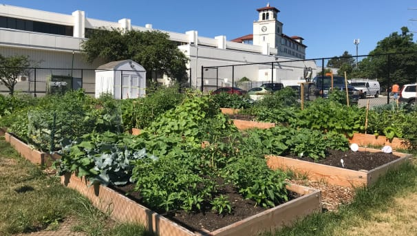 Montclair State University Campus Community Garden Image