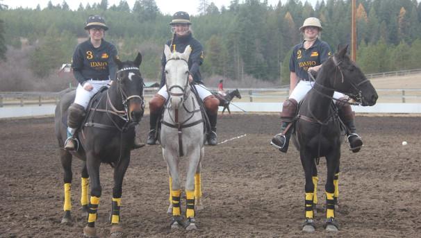 Horse Polo Image