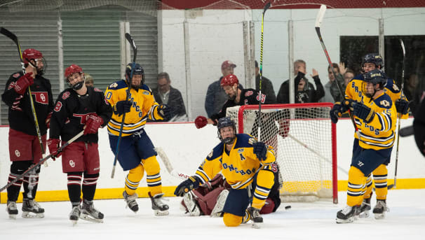 UCO Hockey Image