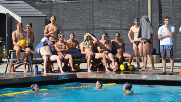 Men's Club Water Polo | 2020 Image