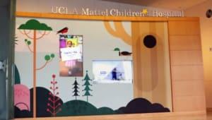 Andrew Lim's UCLA Mattel Children's Hospital Fundraiser