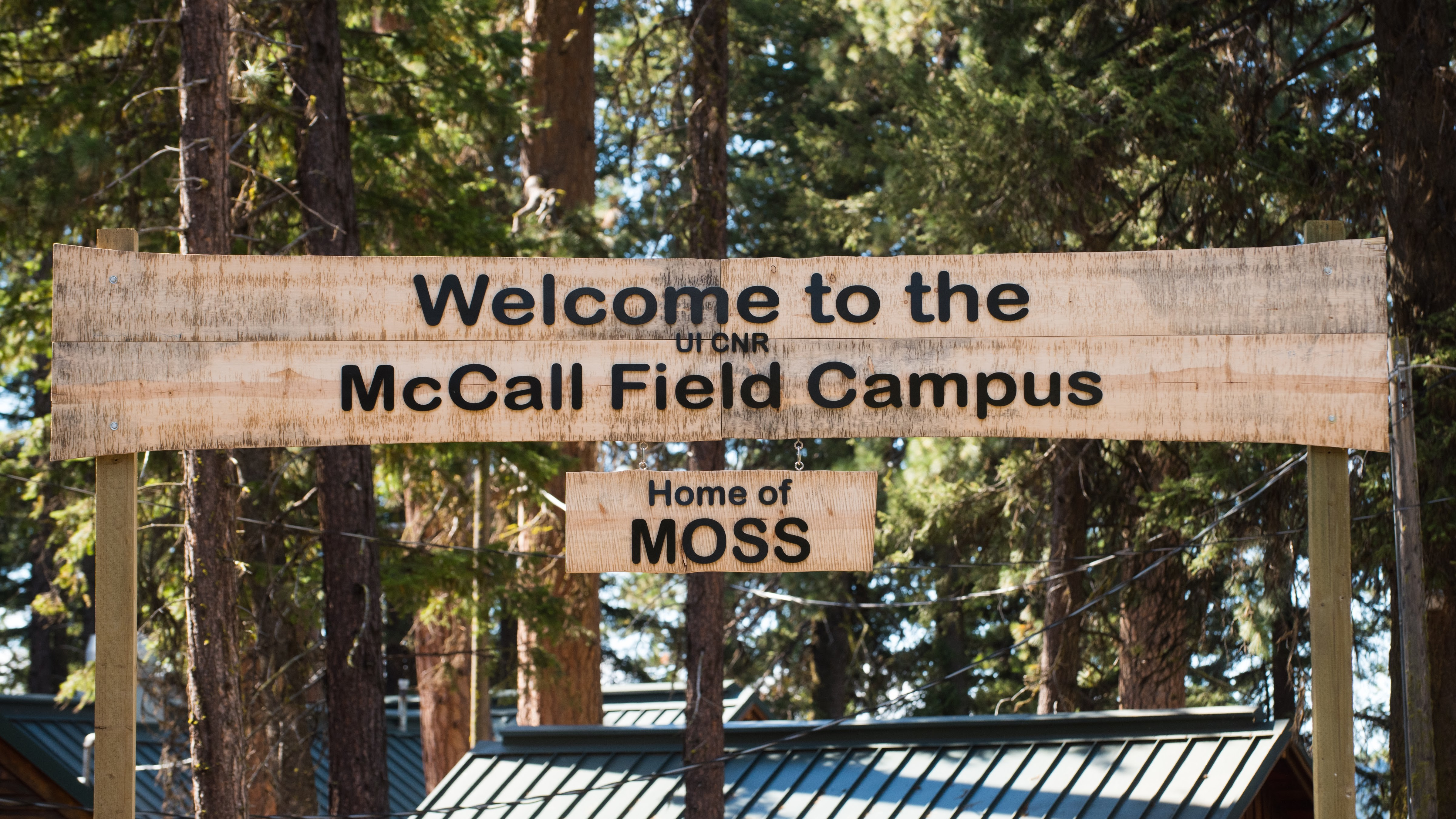 Entrance Sign - McCall Field Campus