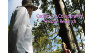 Cadillo Lab Collaborative Amazon Research