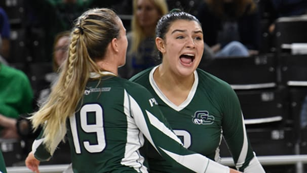 Women's Volleyball Image