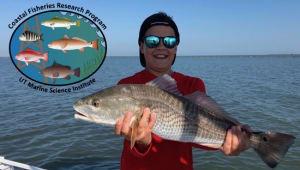Sportfish Science on the Coastal Bend
