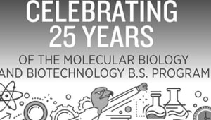 Biomedical Undergraduate Research Fund (BURF)