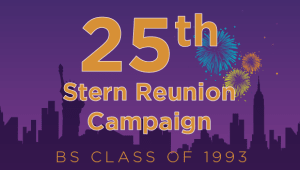 Stern BS Class of 1993 Reunion Campaign
