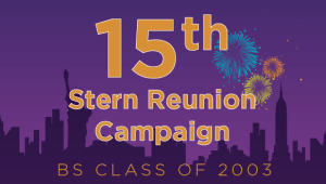 Stern BS Class of 2003 Reunion Campaign