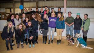 Raising the Jump (Equestrian Team)