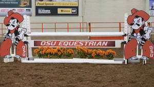 Cowgirl Equestrian Facility Expansion Project