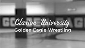 Golden Eagle $99 or More Scholarship Initiative 2018