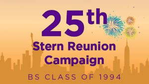 Stern BS Class of 1994 Reunion Campaign