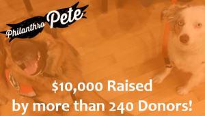 Pete's Pet Posse