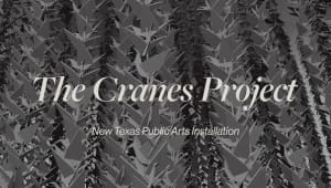The Cranes Project