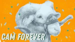 CAM Forever