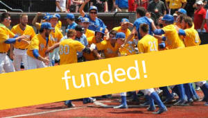 Swinging into a New Era. Help Us Raise $30,000 for Baseball