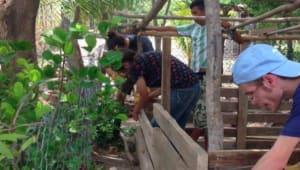 The Nicaragua-UI Partnership: Health and Education
