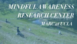 Mindful Awareness Research Center (MARC)
