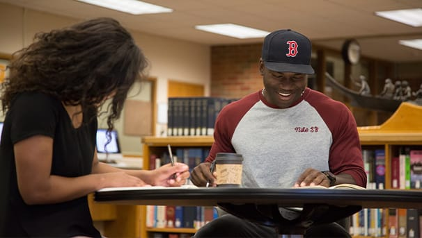 Two students studying in Brooks library