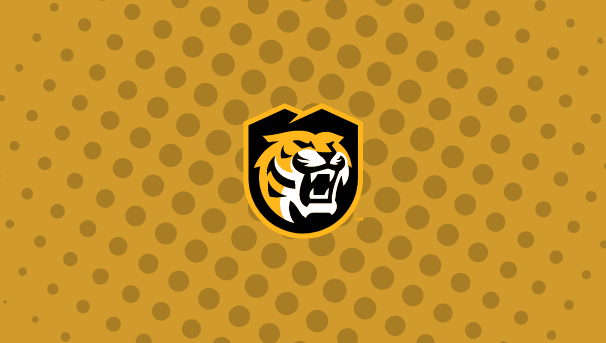 Tiger ExCCellence Image