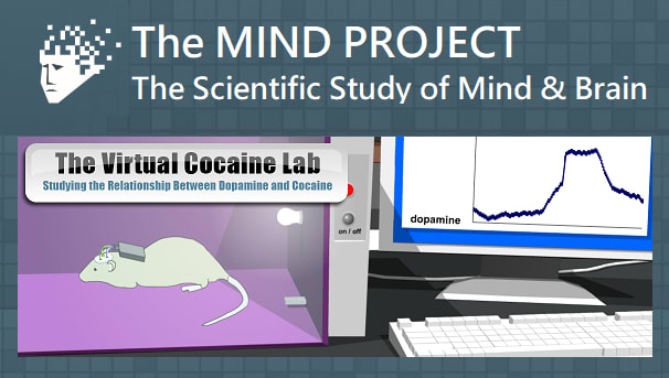 The Mind Project Image