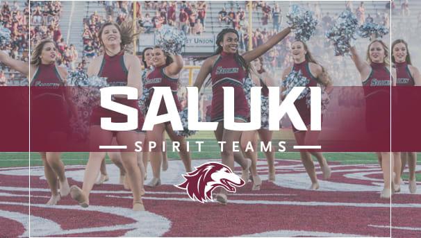 Saluki Spirit Teams Image