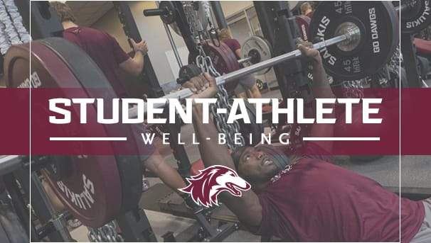 Saluki Student-Athlete Well-Being Image