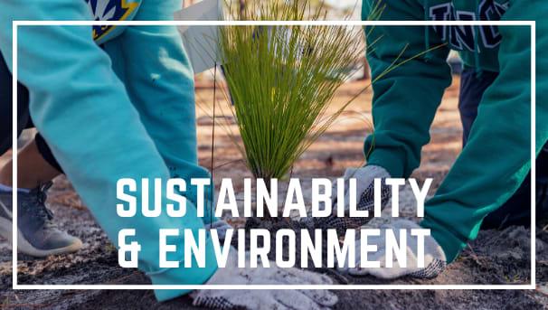 Sustainability & Environment Image