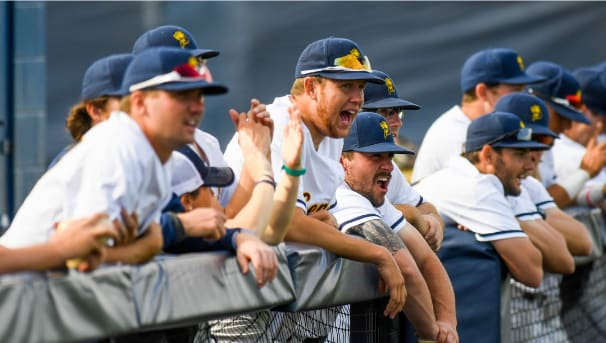 UCO Baseball Image