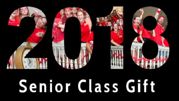 Class of 2018 Senior Gift Image