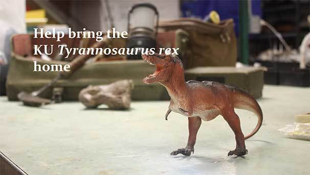 Bring the T. rex home to KU Natural History Museum Image