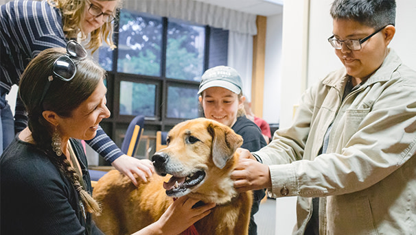 Therapy dog supporting students during finals week