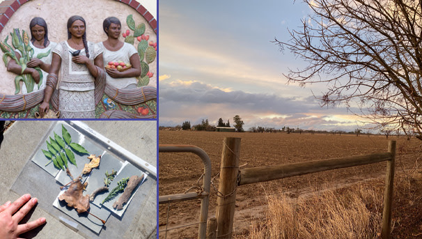 Climate Justice in the Central Valley Image