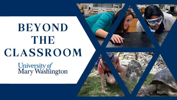 Beyond the Classroom Image