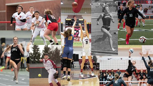Wildcat Womens Sports