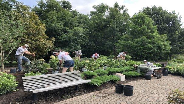 Maintaining the Arboretum