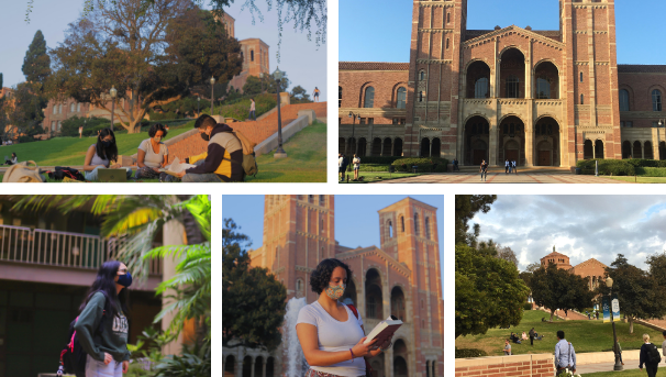 Collage of 5 photos on campus, including two in which students are visibly reading.
