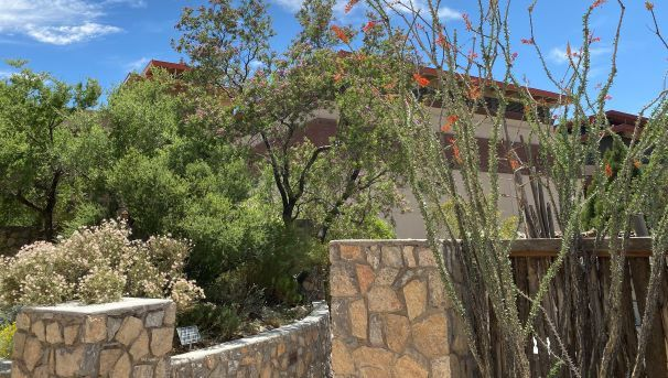 View of garden wall and blue sky