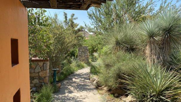 Walkway in the gardens